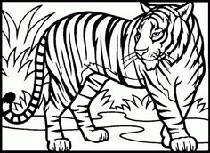 Tigers Coloring Pages. Select From 28148 Printable Coloring Pages Of  Cartoons, Animals, Nature, Bible And Many More.