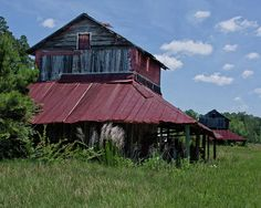 Two Tobacco Barns by Sandra Anderson
