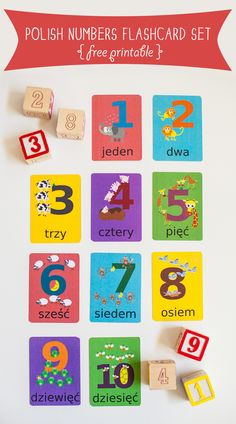 Polish Numbers Flashcard Printable