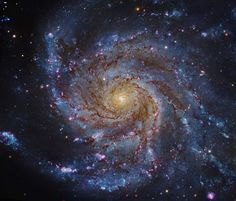 THE PINWHEEL GALAXY Why do many galaxies appear as spirals? A striking example is M101, shown above, whose relatively close distance of about 27 million light years allows it to be studied in some detail.  SLIDES © Subaru Telescope (NAOJ), Hubble Space Telescope
