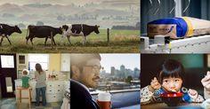 Miraka is Milk - Miraka Cow, Milk, Business, Animals, Animales, Animaux, Cattle, Animal, Store