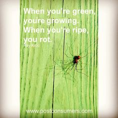#quoteoftheday - never stop growing