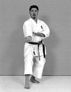 Haitō gedan barai