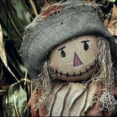 Scarecrow in the corn patch. Scarecrow Doll, Halloween Scarecrow, Fall Halloween, Scarecrow Festival, Scarecrows For Garden, Winter Hats, Fall Winter, Happy Fall Y'all, Fall Harvest