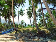 One of my favourite photos I've taken. Palawan Philippines [OC] #travel #photography #nature #photo #vacation #photooftheday #adventure #landscape