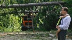 Robert Long and his son watch workers removing downed trees during clean-up operations in the aftermath of Hurricane Hermine in Tallahassee, Florida