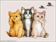 Fan Art of Sweet Kittens,Animated for fans of Cute Kittens. animated kittens