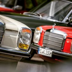 Mercedes W114, Old Mercedes, Classic Mercedes, Mercedes Benz Cars, M Benz, Commercial Vehicle, Cars And Motorcycles, Classic Cars, Corvette