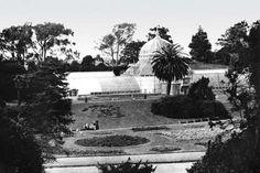 Conservatory, San Francisco, CA