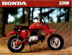My first motorcycle, a Honda Z50R automatic. I put that little bike thru hell and it never quit.