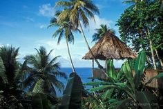 micronesia - the village - the best resort on the island . Too bad it closes down. Federated States Of Micronesia, Village Hotel, Best Resorts, Great Vacations, Island Beach, Great Barrier Reef, South Pacific, Holiday Destinations, Oh The Places You'll Go