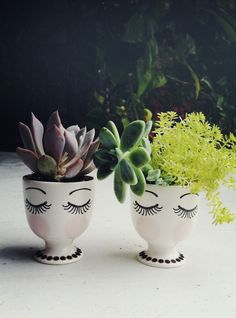 Egg Cup Planters via Justina Blakeney
