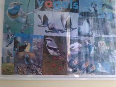 collage over vogels hangt op me kamer