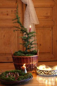 Ab ins Körbchen * Geschenkstipps * - Deko Weihnachten