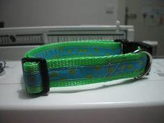 meine hunde: Was einfaches: Ein Halsband