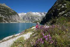 Ausflugstipp Frühling: Garten Jardin des Iris in Vullierens Innsbruck, Park Hotel, Summer Days, Switzerland, Castle, Hiking, Camping, Mountains, Travel
