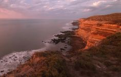 Loberia Punta Bermeja