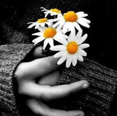 Quando o orgulho contamina o coração, a alma fica doente.***