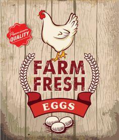 Retro Fresh Eggs Poster Design With Wooden Background Stock Vector . Egg Packaging, Honey Packaging, Retro Poster, Vintage Posters, Vintage Signs, Decoupage, Poster Design, Graphic Design, Stock Foto