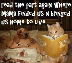 I love this...only my pets have better grammar.