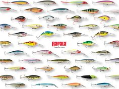 Rapala Lures - expensive, effective, and beautiful.