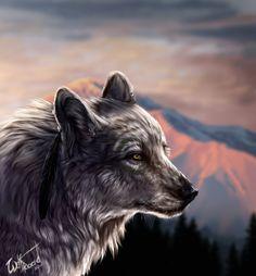 White by WolfRoad.deviantart.com on @deviantART