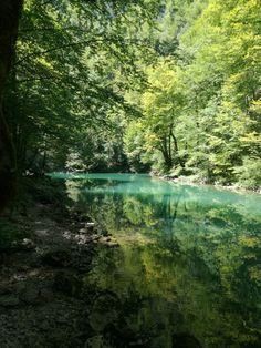 Source od Kupa river National park Risnjak