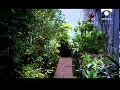 En la mente de las plantas-Documental Completo Esp https://www.youtube.com/watch?v=vBTYfQ-vQxw https://www.youtube.com/watch?v=wAkkNk-2BYs