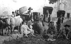 una famiglia di contadini calabresi: non ci sono tracce su internet di pescatori in calabria nella seconda metà dell'800...