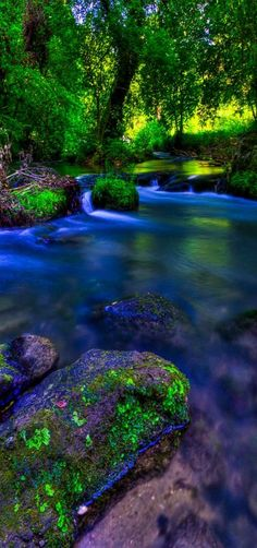 'Colors of nature' - Treja river, Grezanno, Lazio, Italy by Claudio Cantonetti