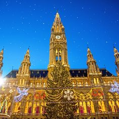 It doesn't get much better than Christmas in Vienna. Photo courtesy of brianthio on Instagram. #howiholiday