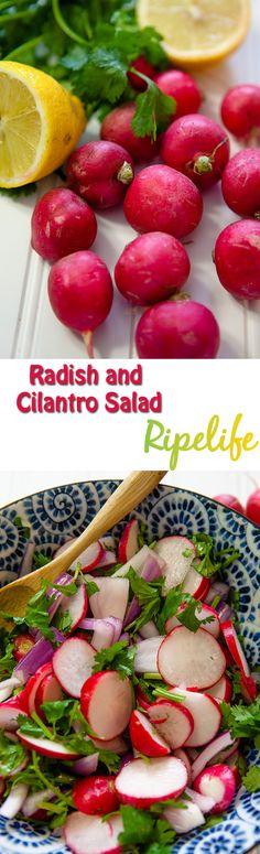 Radish And Cilantro Salad #Vegan #Radish #Cilantro #Salad