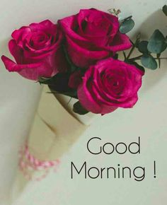 Good Morning Wishes Friends, Good Morning Kisses, Good Morning Happy Monday, Good Morning Love, Morning Thoughts, Happy Tuesday, Sunday, Good Morning Boyfriend Quotes, Good Morning Image Quotes