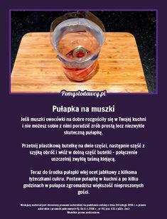 Przecięta plastikowa butelka pomoże Ci się pozbyćczęstego problemu w kuchni. Food, Essen, Meals, Yemek, Eten