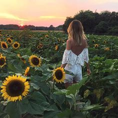sunflower fields forever @tuulavintage in the @saylorny daisy romper