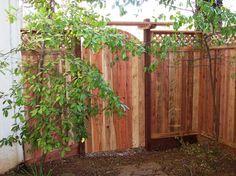Lattice fence and gate