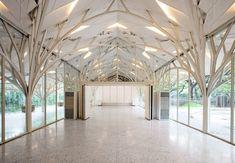 Une réalisation architecturale inspirée de la morphologie des arbres, intitulée: « The Tote » à Bombay en Inde.