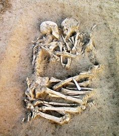 Skeleton Couple picture(true lover never die)[419x479]