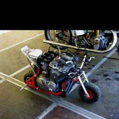 Now that's a pit bike.