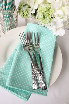 Hey, I found this really awesome Etsy listing at https://www.etsy.com/listing/229264444/4-cloth-napkins-large-mint-green-white