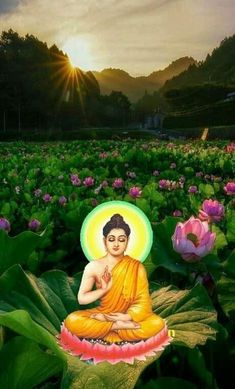 Reiki, Buddha, Zen, Lord, Outdoor Decor, Image, Lorde
