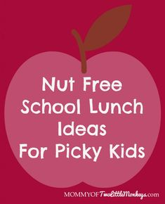 Nut-Free Lunch Ideas For Picky Kids