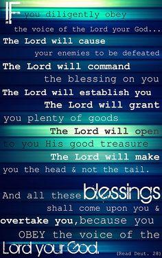 Deuteronomy 28 verse