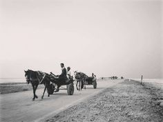 Brilliant classic pic from Greater Kutch