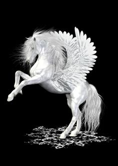 The Pegasus ..  StarFire .. fantasy horse Art Print