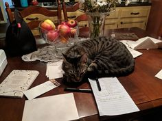 Miko wants to help send out wedding invites. Cheap Wedding Venues, Outdoor Wedding Venues, Budget Wedding Invitations, Invites, Plan Your Wedding, Wedding Planning, Welcome Post, Getting Married, Pictures