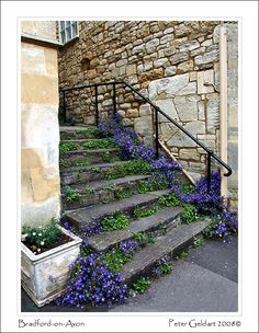 Bradford on Avon, England  Copyright: Peter Geldart