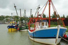 Bateaux de pêche à Mortagne-sur-Gironde