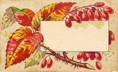 Fall Leaves Clip Art | Free Vintage Clip Art - Autumn Leaves Calling Cards