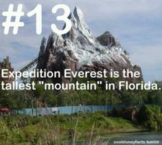 Disney Fact #13